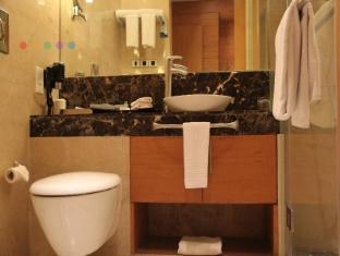 Radisson Blu Marina Hotel Connaught Place New Delhi dan NCR - Bilik Mandi