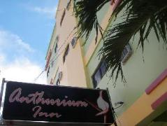 Anthurium Inn | Philippines Budget Hotels