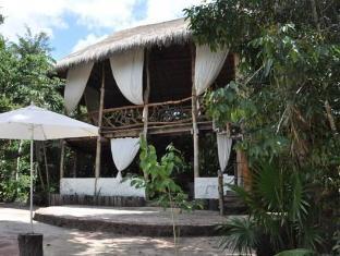 /ja-jp/jolie-jungle/hotel/puerto-morelos-mx.html?asq=jGXBHFvRg5Z51Emf%2fbXG4w%3d%3d