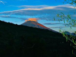 Acarya Bungalows Bali - Villa