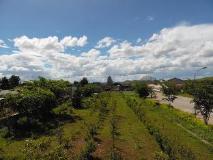 Phoukham Garden Hotel and Resort: garden