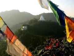 Peace Dragon Lodge | Nepal Budget Hotels