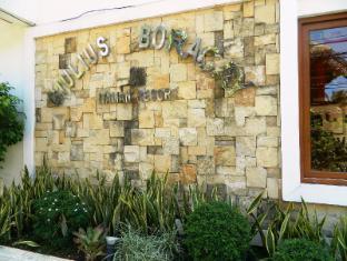 /giulius-boracay-italian-resort/hotel/boracay-island-ph.html?asq=Qn%2fkrjDS01nsvdfoyKRYRm%2fhXiMywrNNibIbZx%2fR8J2MZcEcW9GDlnnUSZ%2f9tcbj