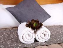Sandpiper Motel Apollo Bay: guest room