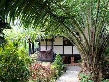 Hillside - Nature Lifestyle Lodge: exterior