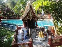 Hillside - Nature Lifestyle Lodge: garden