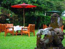 Mrauk Oo Nawarat Hotel: garden