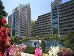 Daemyung Resort Vivaldi Park | South Korea Hotels Cheap