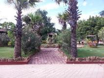 Sky Palace: garden