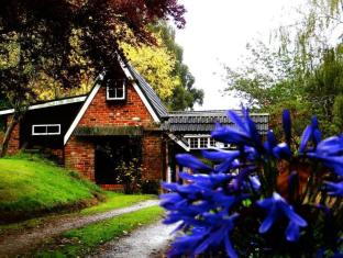 /arden-country-house-bed-and-breakfast/hotel/dunedin-nz.html?asq=vrkGgIUsL%2bbahMd1T3QaFc8vtOD6pz9C2Mlrix6aGww%3d