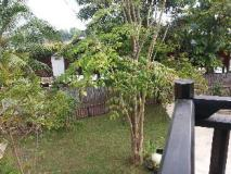 Mr Tho's Bungalow: garden