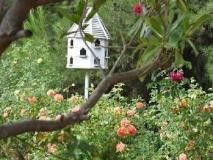 The Residence: surroundings