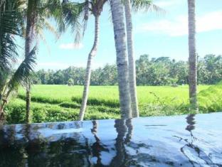 Villa Kayu Lama Bali - Swimming Pool