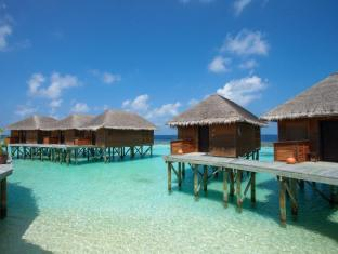 Vakarufalhi Island Resort Maldives Islands - Surroundings