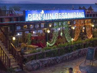/penguin-village-hotel-dahab/hotel/dahab-eg.html?asq=vrkGgIUsL%2bbahMd1T3QaFc8vtOD6pz9C2Mlrix6aGww%3d