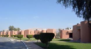 /id-id/one-to-one-hotel-resort-ain-al-faida/hotel/al-ain-ae.html?asq=vrkGgIUsL%2bbahMd1T3QaFc8vtOD6pz9C2Mlrix6aGww%3d
