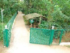 Cool Resort