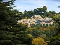 Four Seasons Hotel The Westcliff - South Africa Discount Hotels