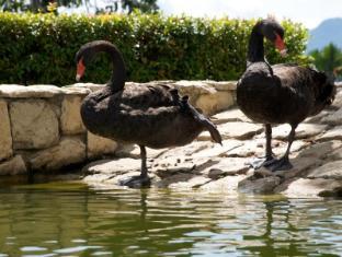 Colmar Tropicale – Berjaya Hills Bentong - Swan Pond