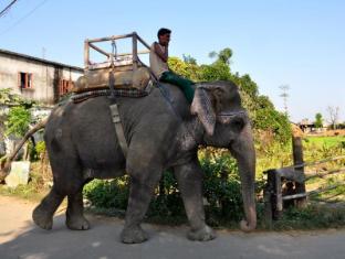 Chitwan Safari Camp & Lodge Chitwan - Elephant Safari