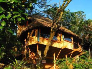 /vanira-lodge/hotel/tahiti-pf.html?asq=vrkGgIUsL%2bbahMd1T3QaFc8vtOD6pz9C2Mlrix6aGww%3d