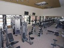 Serviced Houses Villa Stoneyfell: fitness room