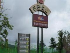 Mt. Palgong Spa Tourist Hotel