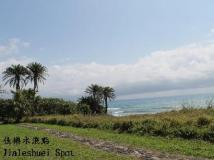 A Fei Surf Inn - NaNu: