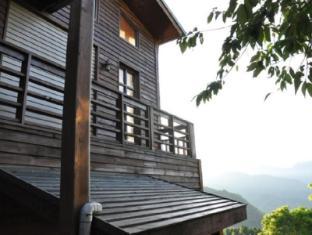 Alishan Tea Garden Mountain Hometown