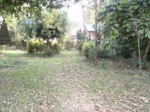 Sevilai Guesthouse: garden