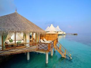 /cs-cz/safari-island-resort/hotel/maldives-islands-mv.html?asq=jGXBHFvRg5Z51Emf%2fbXG4w%3d%3d