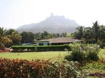 Panoramic Resort: view
