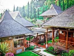 Patuha Resort Kawah Putih | Indonesia Budget Hotels