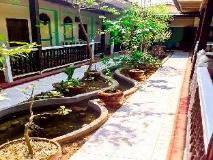 Mya Thida Hotel: garden