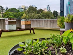 Hotel Jen Brisbane Бризбейн - Градина