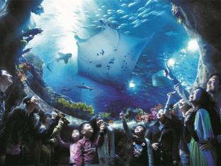H.K Commercial Inn Hong Kong - Ocean Park