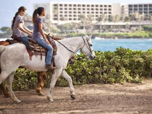 Turtle Bay Resort Oahu Hawaii - Sports and Activities