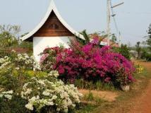 Thavisok Resort: interior