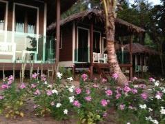 Cheap Hotels in Tioman Island Malaysia | 1511 Coconut Grove