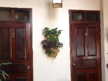 Manichan Guesthouse: exterior