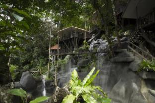 /rock-and-treehouse-resort/hotel/khao-sok-suratthani-th.html?asq=jGXBHFvRg5Z51Emf%2fbXG4w%3d%3d