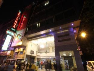 Hotel Krishna Plaza