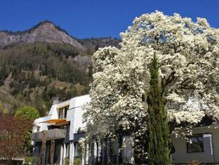 /chateau-schupbach/hotel/vitznau-ch.html?asq=jGXBHFvRg5Z51Emf%2fbXG4w%3d%3d
