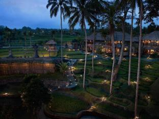 Kamandalu Ubud Resort Bali - Rice Paddies - Night time
