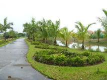 Pinlon Village Hotel & Resorts: surroundings