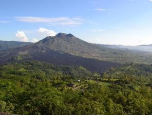 Kintamani Backpackers Bali - Volcano Batur from Room