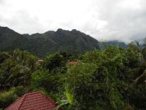 Amy Guesthouse: view