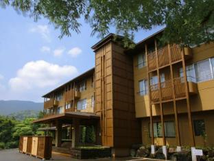 仙石原溫泉箱根山景旅館