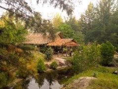 Phrathong Nature Resort | Thailand Budget Hotels
