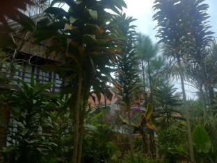 Nature Land Hotel Kalaw - Suite